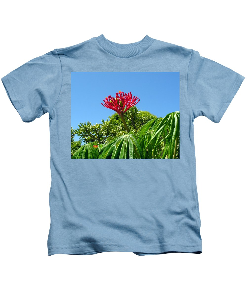 Coral; Bush; Coralbush; Weed; Flower; Leaf; Leaves; Fruit; Nut; Seed; Florida; Wild; Vacant; Lots; N Kids T-Shirt featuring the photograph Coral Bush With Flower And Fruit by Allan Hughes