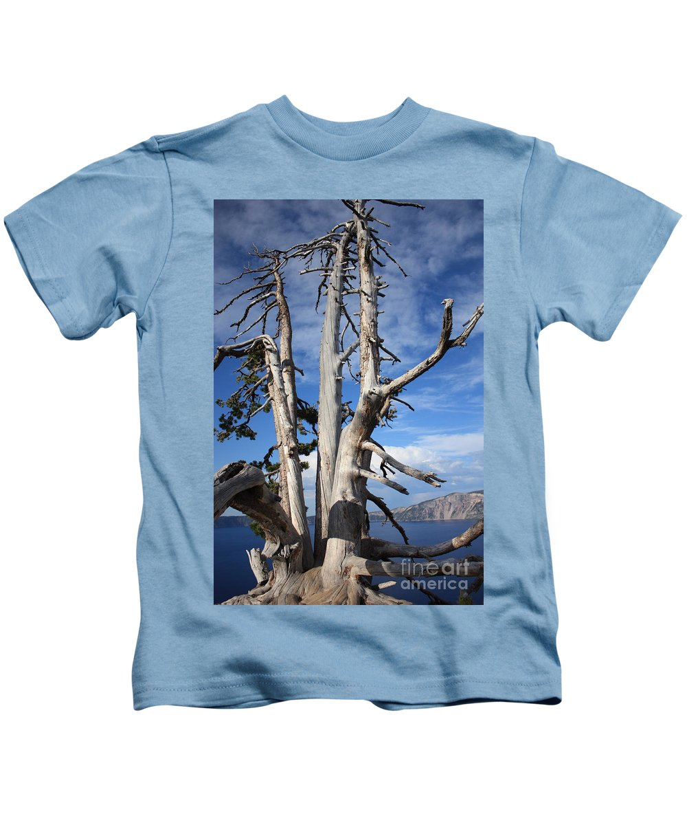 Tree Kids T-Shirt featuring the photograph Crater Lake Tree by Carol Groenen