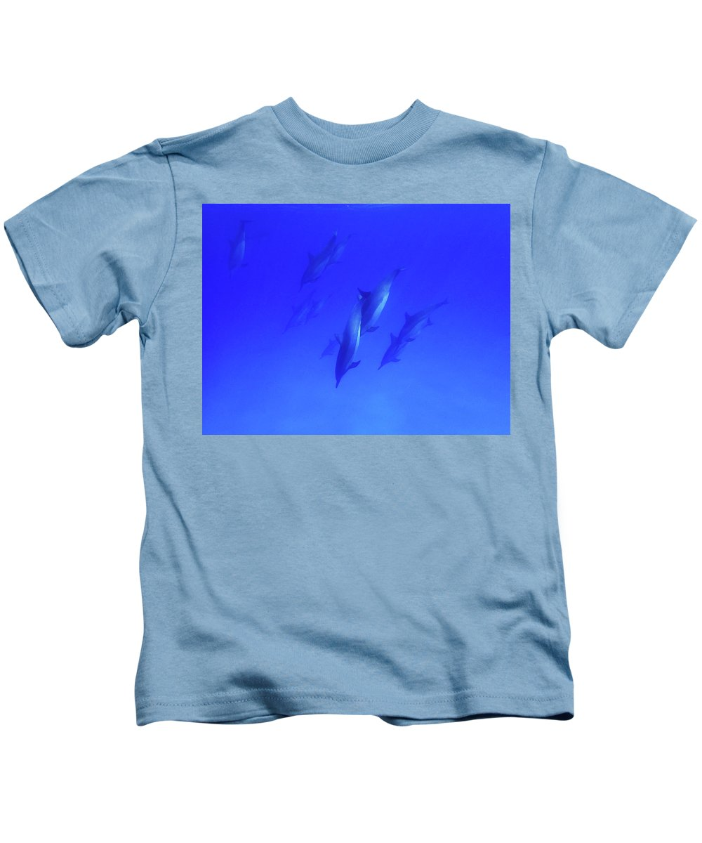 Dolphins Kids T-Shirt featuring the photograph Entwined Dolphins by Erin Donalson