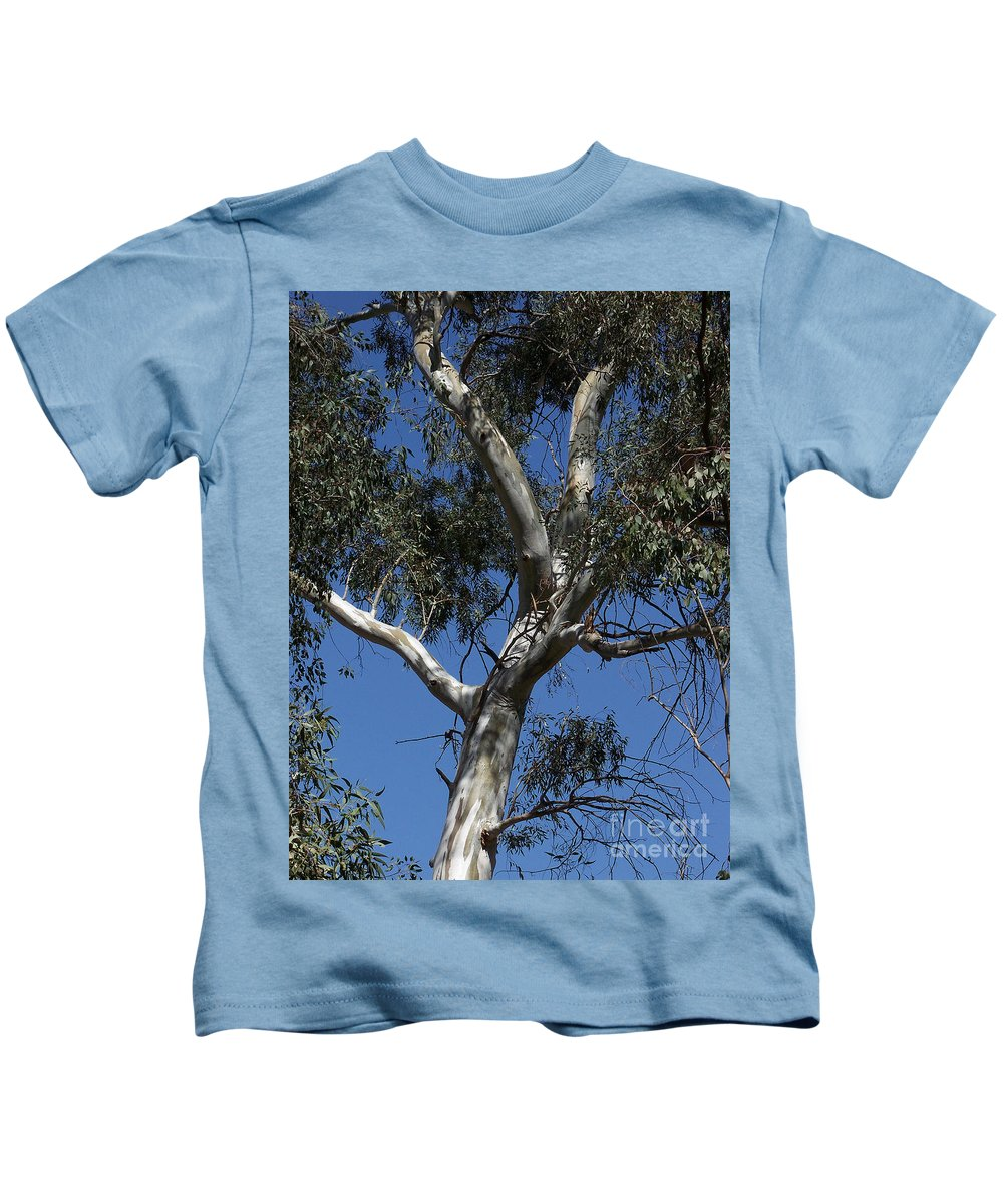 Trees Kids T-Shirt featuring the photograph Eucalyptus by Kathy McClure