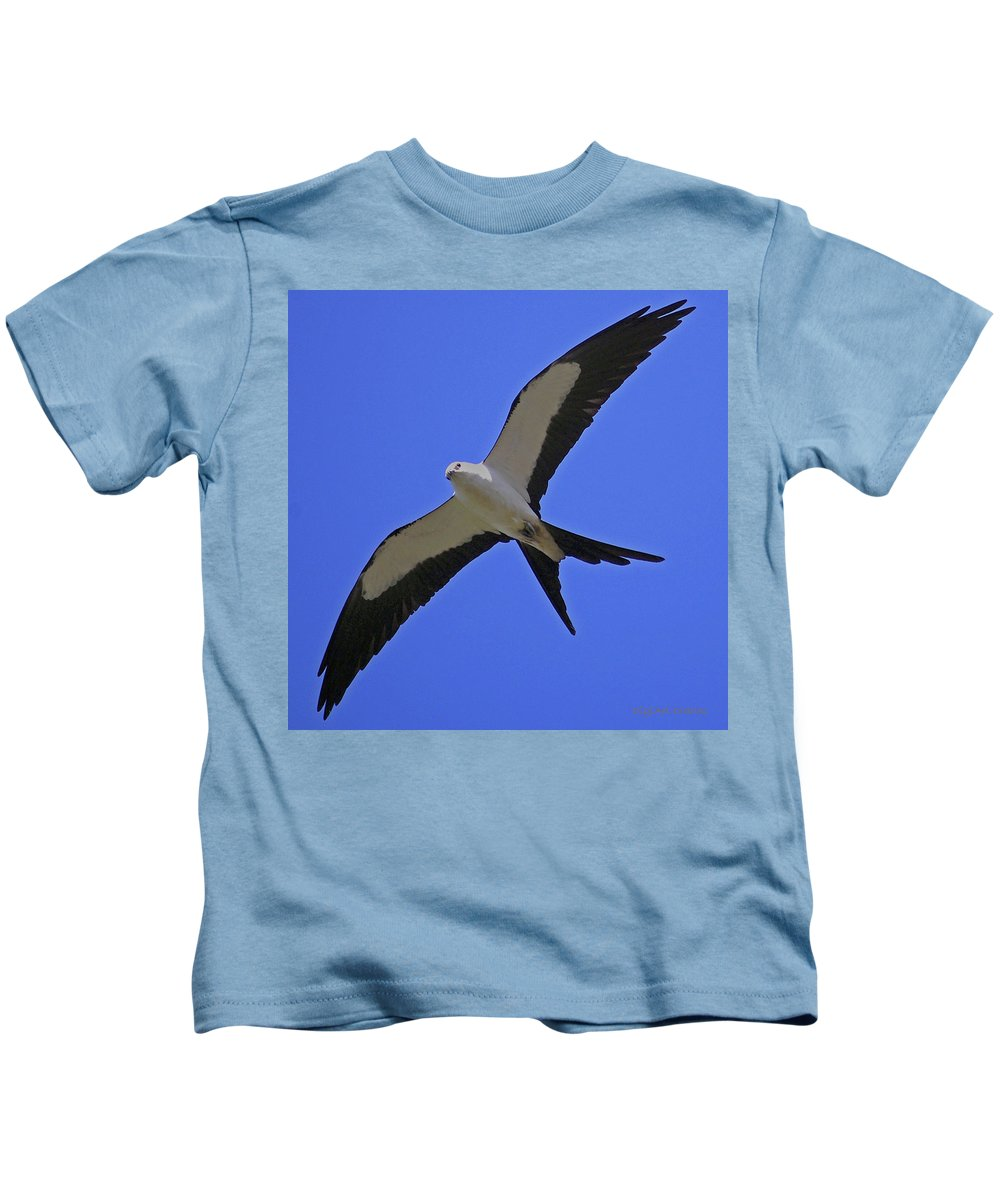 Swallow Tailed Kite Kids T-Shirt featuring the digital art Flight Of The Kite by DigiArt Diaries by Vicky B Fuller