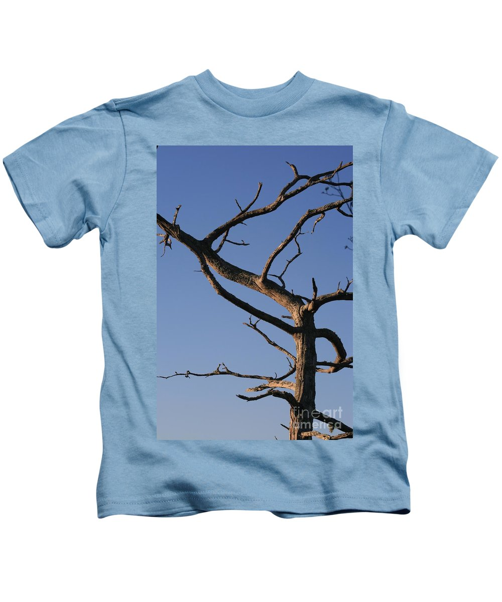 Tree Kids T-Shirt featuring the photograph Gnarly Tree by Nadine Rippelmeyer