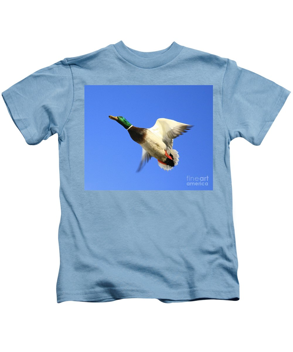 Duck Kids T-Shirt featuring the photograph Heads Up by Robert Pearson