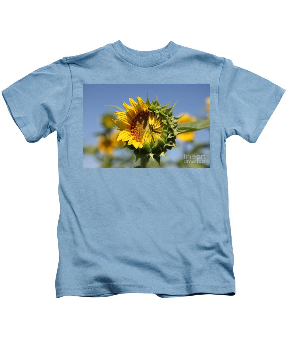 Sunflowers Kids T-Shirt featuring the photograph Hesitant by Amanda Barcon