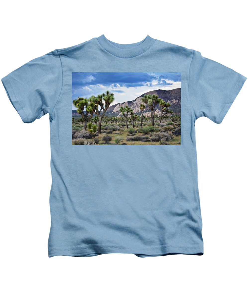 Joshua Tree Kids T-Shirt featuring the photograph Joshua Tree National Park Landscape by Kyle Hanson
