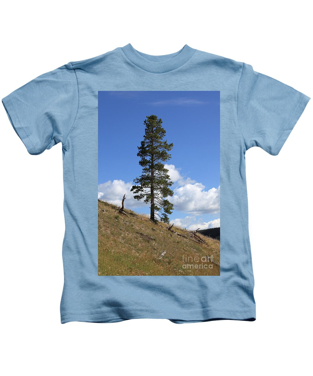 Pine Tree Kids T-Shirt featuring the photograph Lone Pine, Yellowstone by Ted Kinsman