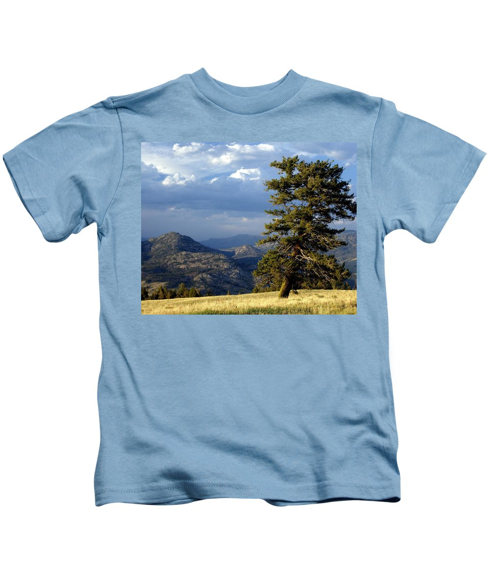 Yellowstone National Park Kids T-Shirt featuring the photograph Lonly Tree by Marty Koch