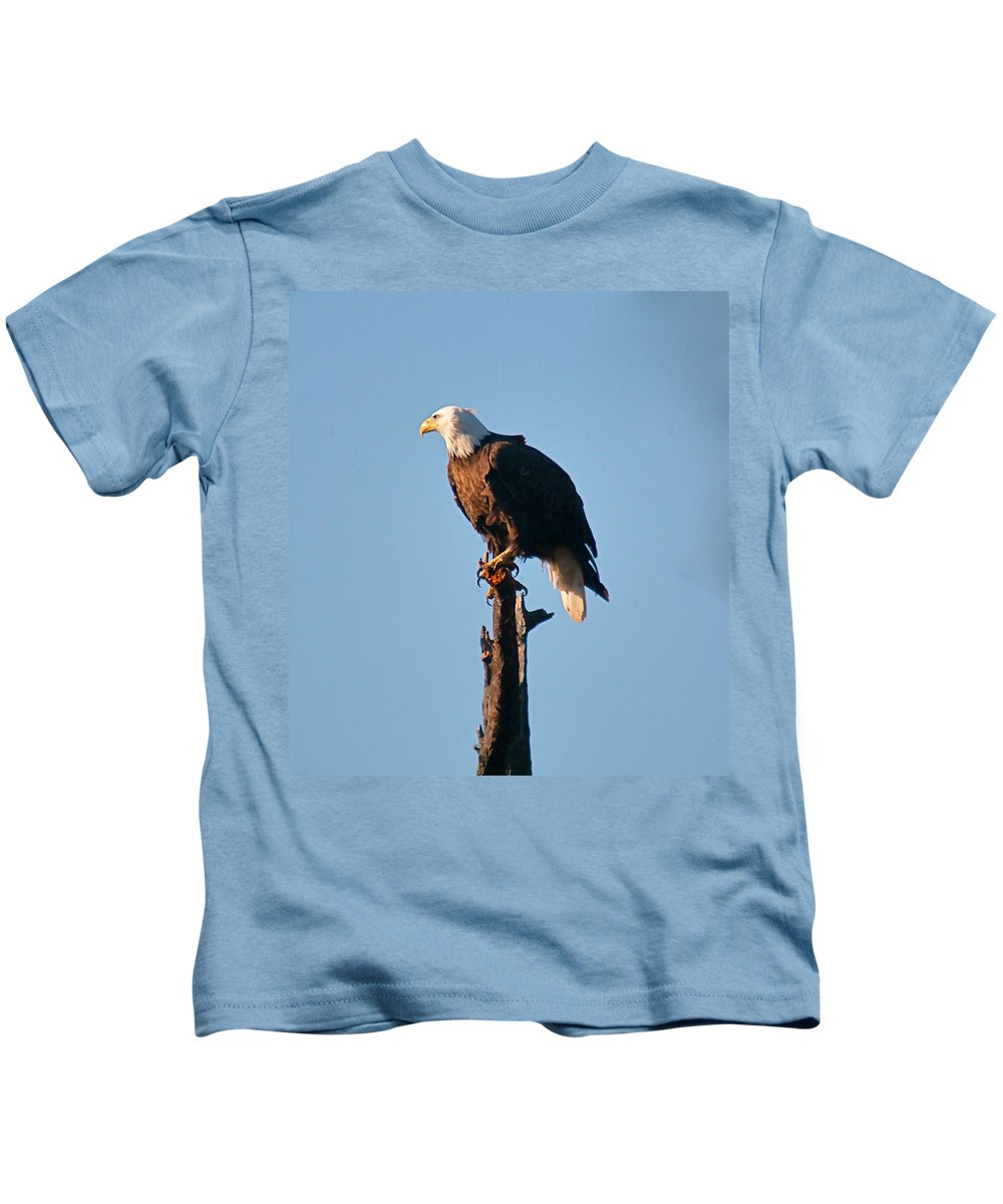 Eagle Kids T-Shirt featuring the photograph On The Look Out by Robert Pearson