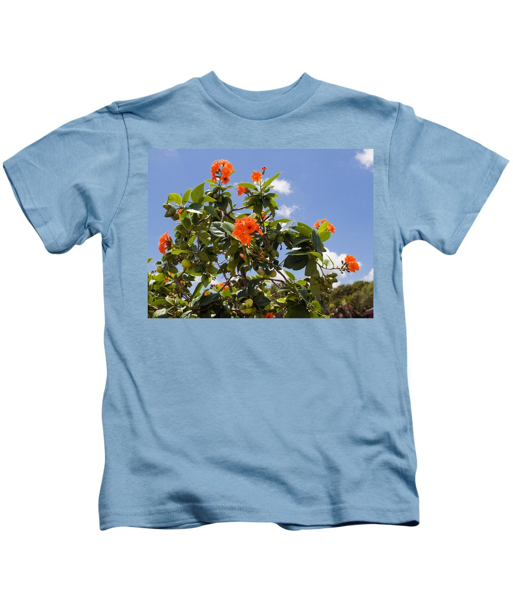 Hibiscus; Rosasinensis; Rosa; Sinensis; Rosa-sinensis; Tree; Bush; Shrub; Plant; Flower; Flowers; Fl Kids T-Shirt featuring the photograph Orange Hibiscus With Fruit On The Indian River In Florida by Allan Hughes