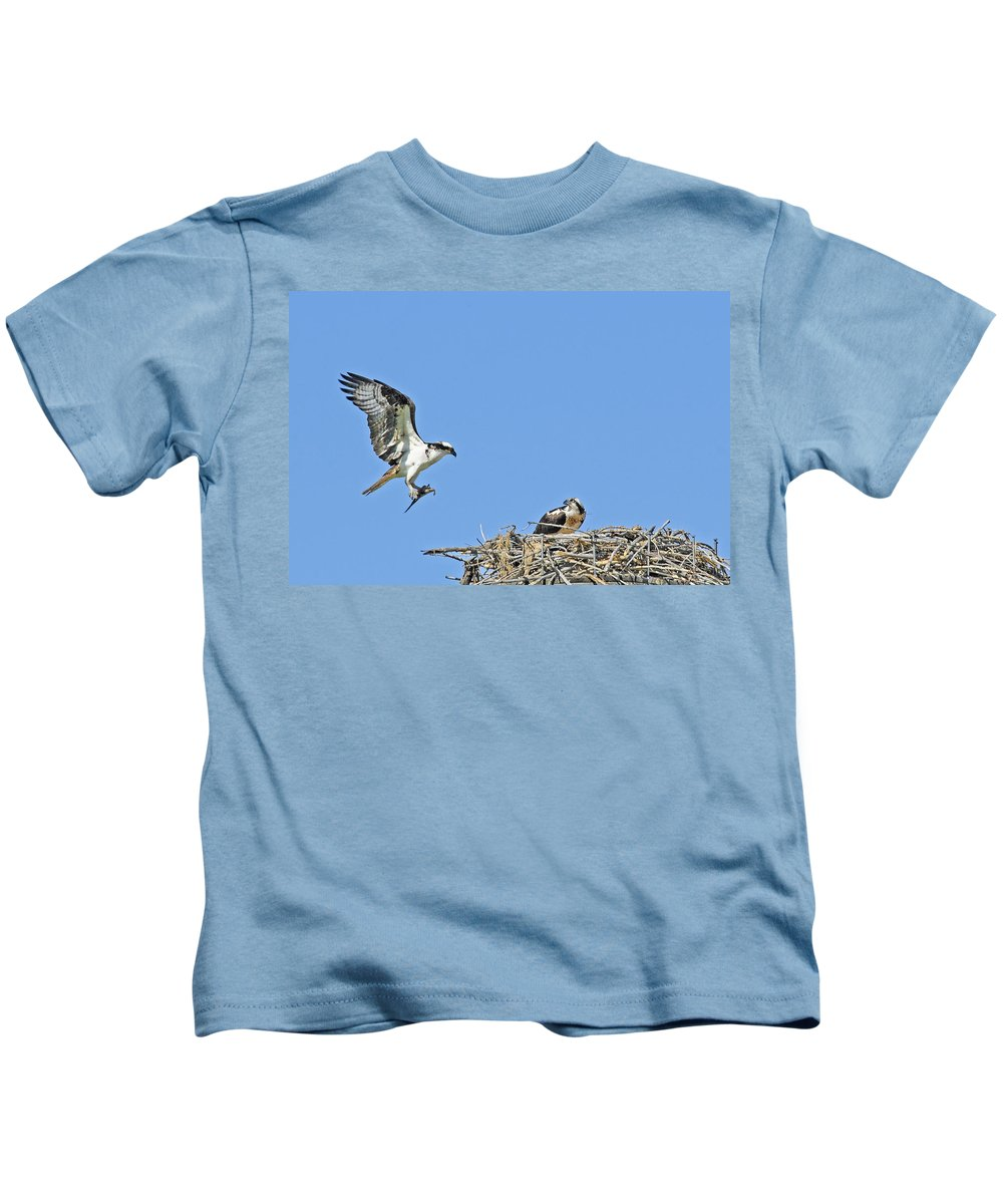 Osprey Kids T-Shirt featuring the photograph Osprey Brings Fish To Nest by Gary Beeler