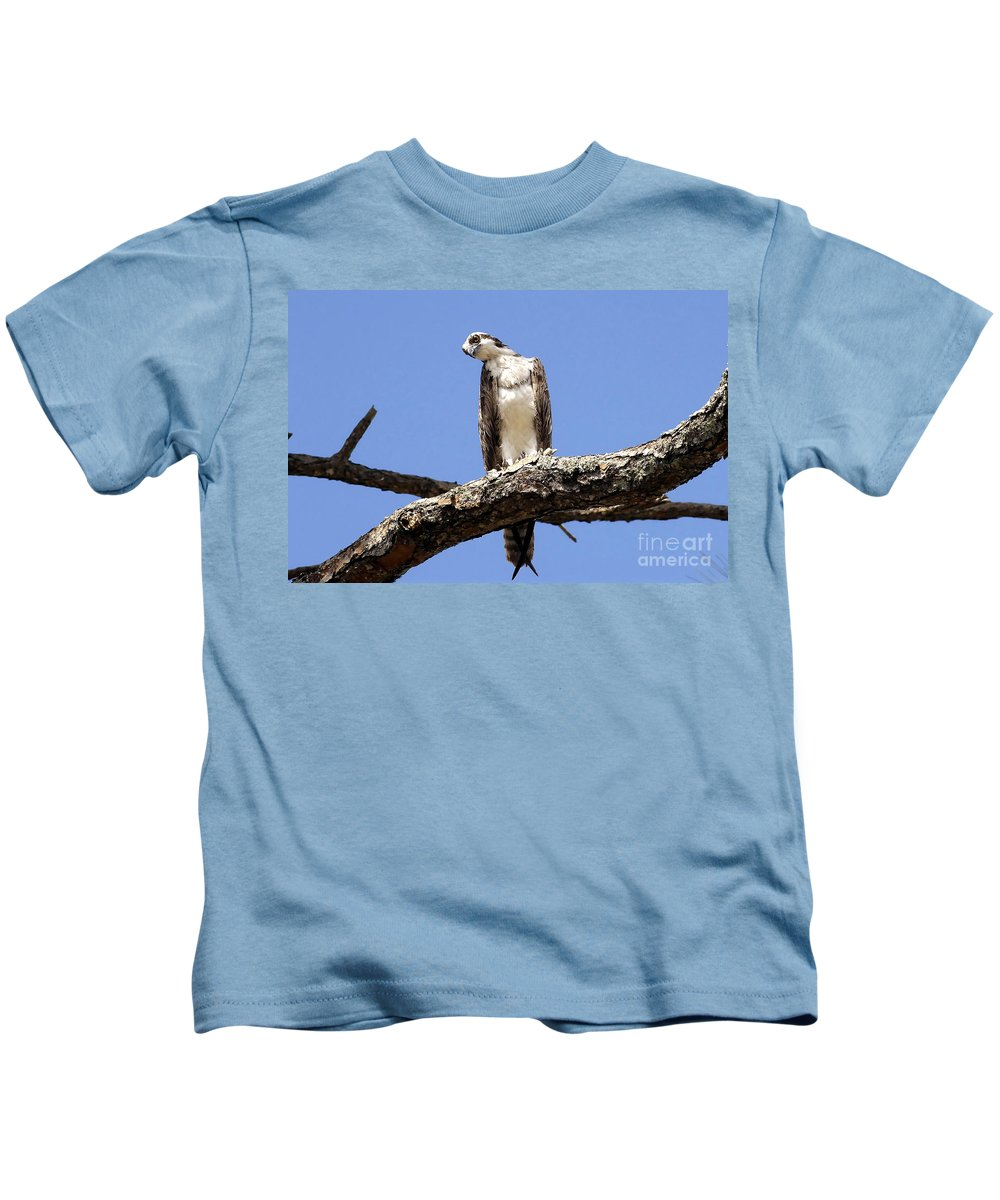 Osprey Kids T-Shirt featuring the photograph Osprey In The Trees by David Lee Thompson