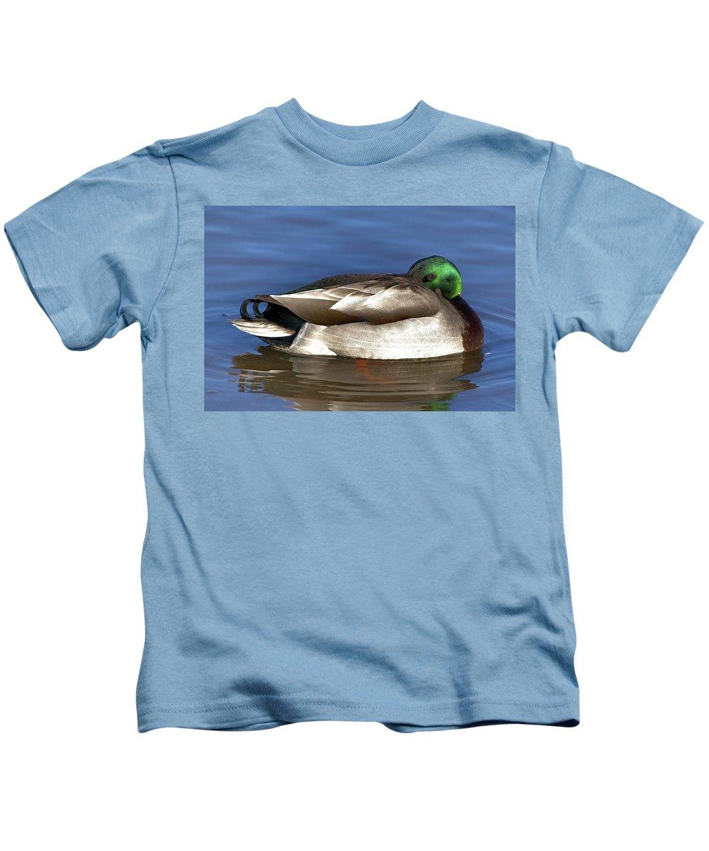 Duck Kids T-Shirt featuring the photograph Peek A Boo by Robert Pearson