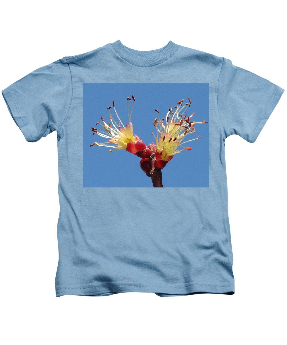 Kids T-Shirt featuring the photograph Re-awakening by Luciana Seymour