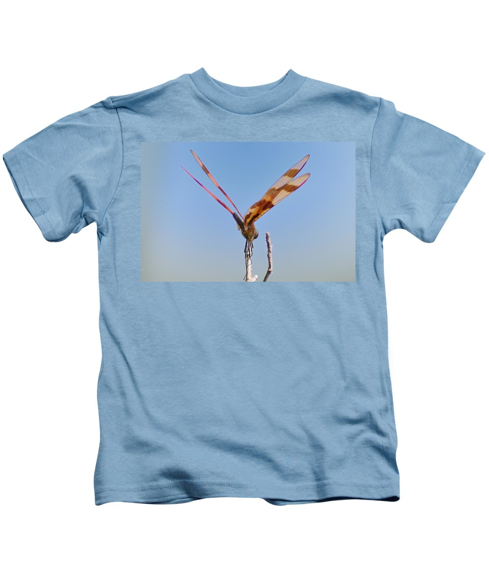 Dragonfly Kids T-Shirt featuring the photograph Ready For Take Off by Bill Cannon
