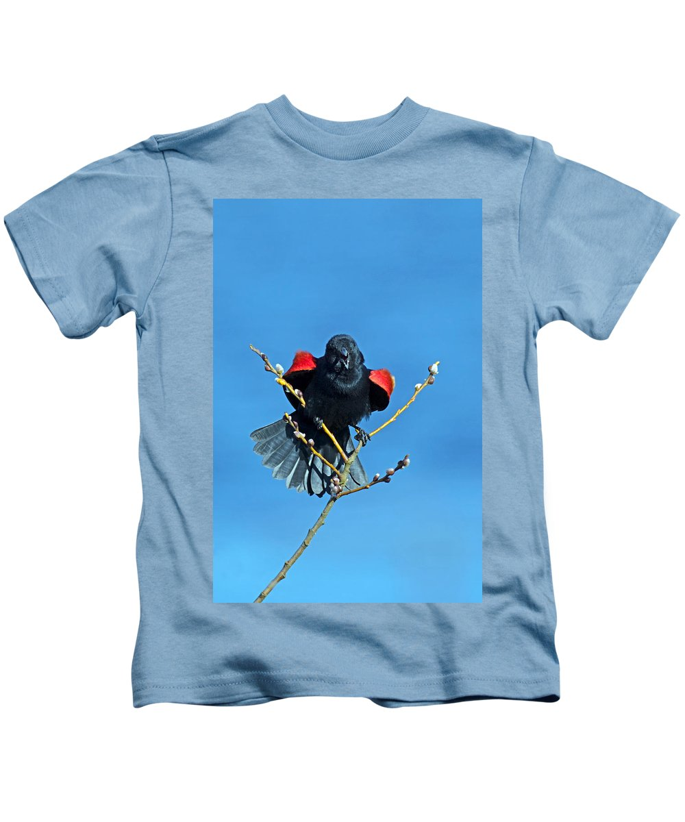 Red-winged Blackbird Kids T-Shirt featuring the photograph Red-winged Blackbird by Randall Ingalls