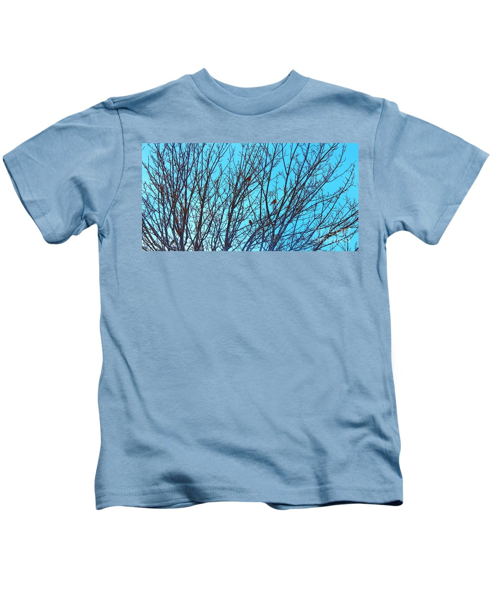 Returning Robins Kids T-Shirt featuring the photograph Returning Robins by Barbara Griffin