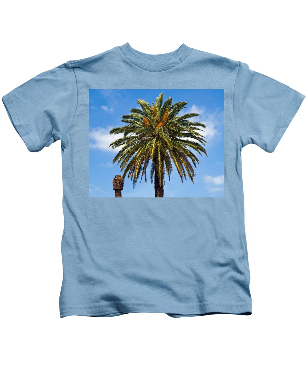 Palm; Tree; Royal; Queen; Scepter; Florida; Frond; Saw; Palmetto; Branch; Wave; Wind; Breeze; Scrub; Kids T-Shirt featuring the photograph Royal Palm In Florida by Allan Hughes