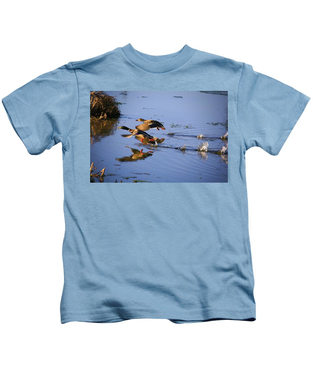Duck Kids T-Shirt featuring the photograph Take Off by Robert Pearson