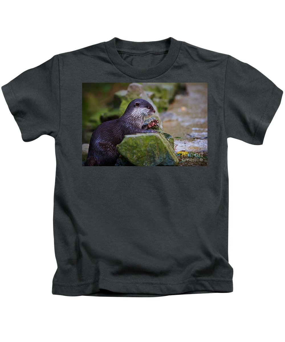 Asian Kids T-Shirt featuring the photograph Asian Small Clawed Otter by Nick Biemans