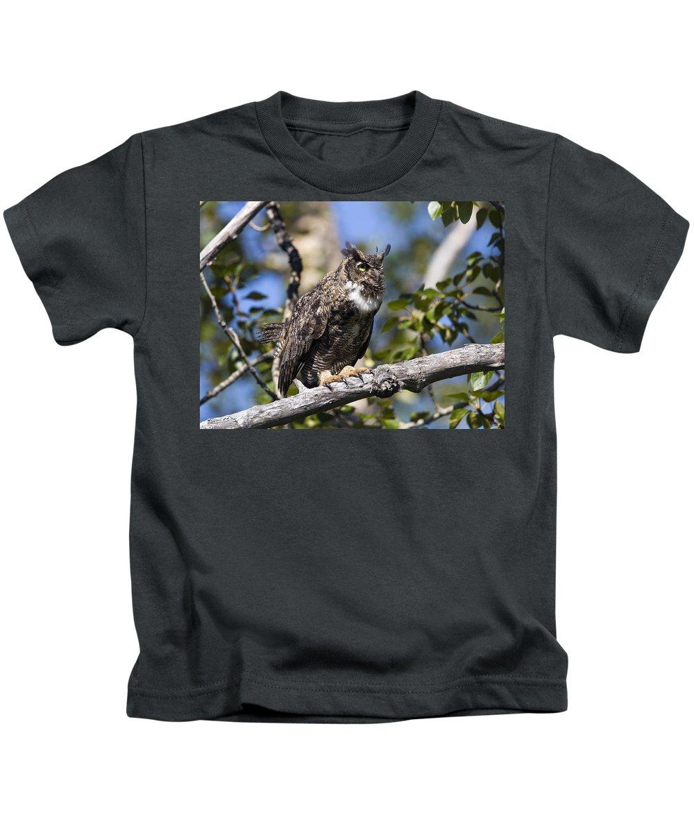 Doug Lloyd Kids T-Shirt featuring the photograph Hoot Hoot by Doug Lloyd