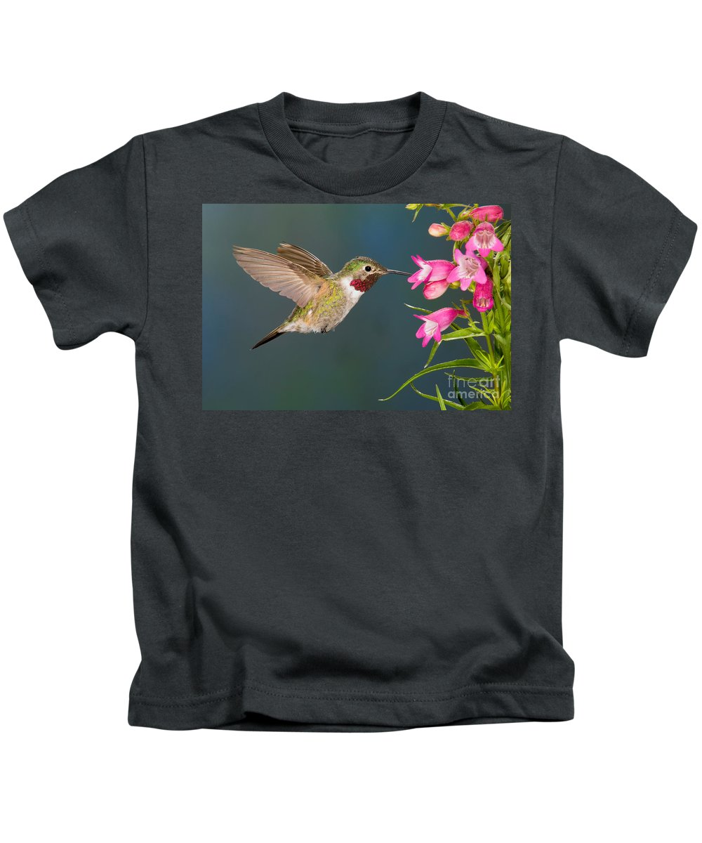 Fauna Kids T-Shirt featuring the photograph Male Broad-tailed Hummingbird by Anthony Mercieca