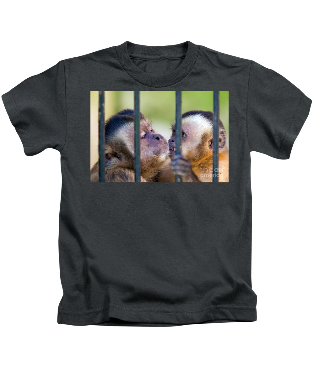 Animal Kids T-Shirt featuring the photograph Monkey Species Cebus Apella Behind Bars by Michal Bednarek