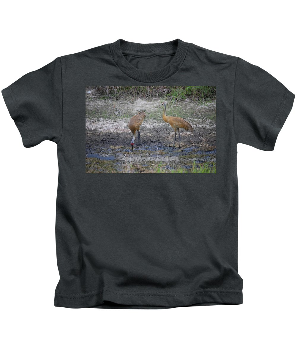 Feeding Kids T-Shirt featuring the photograph Sandhill Stork by Robert Floyd