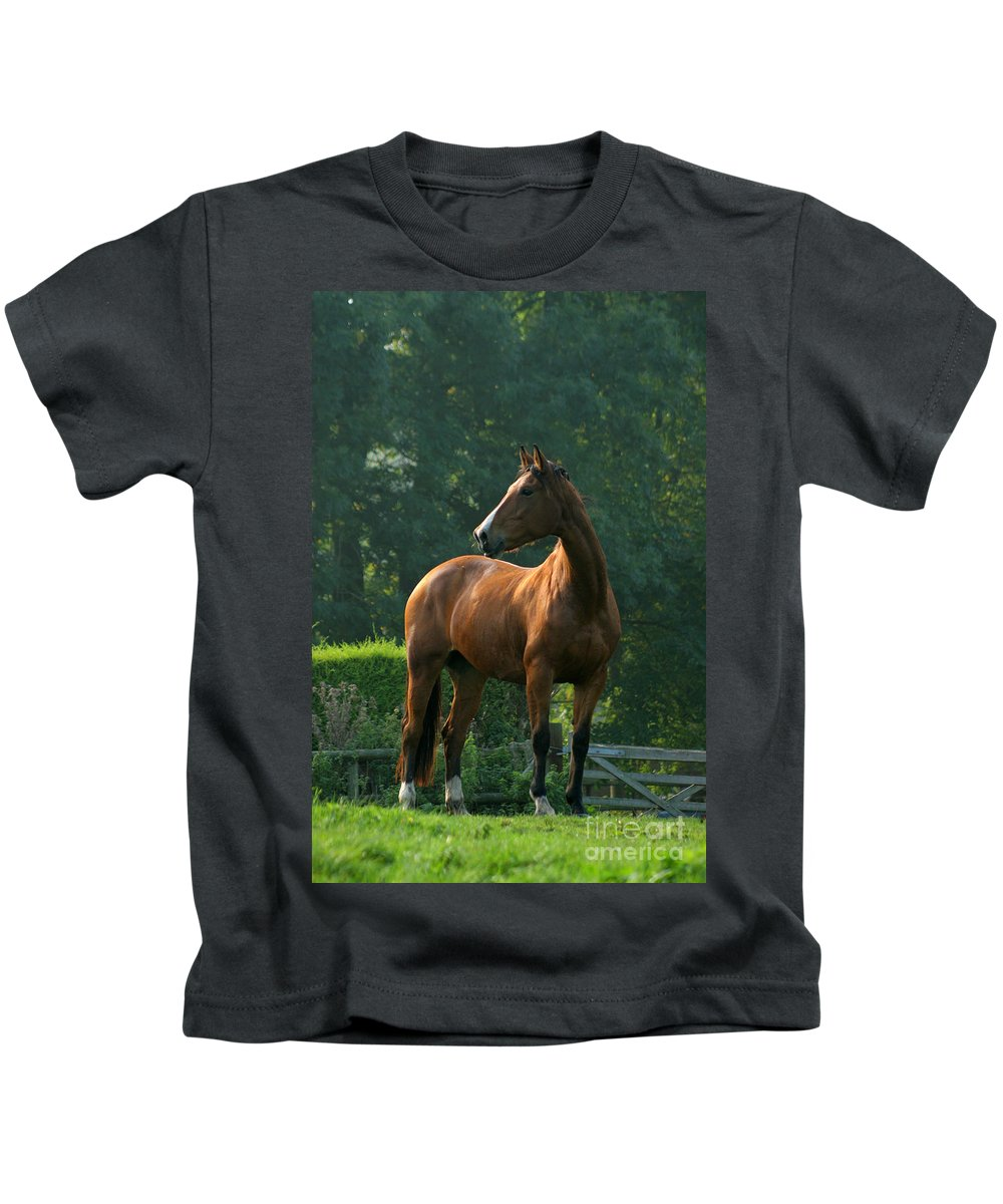 Horse Kids T-Shirt featuring the photograph Sentinel by Angel Ciesniarska