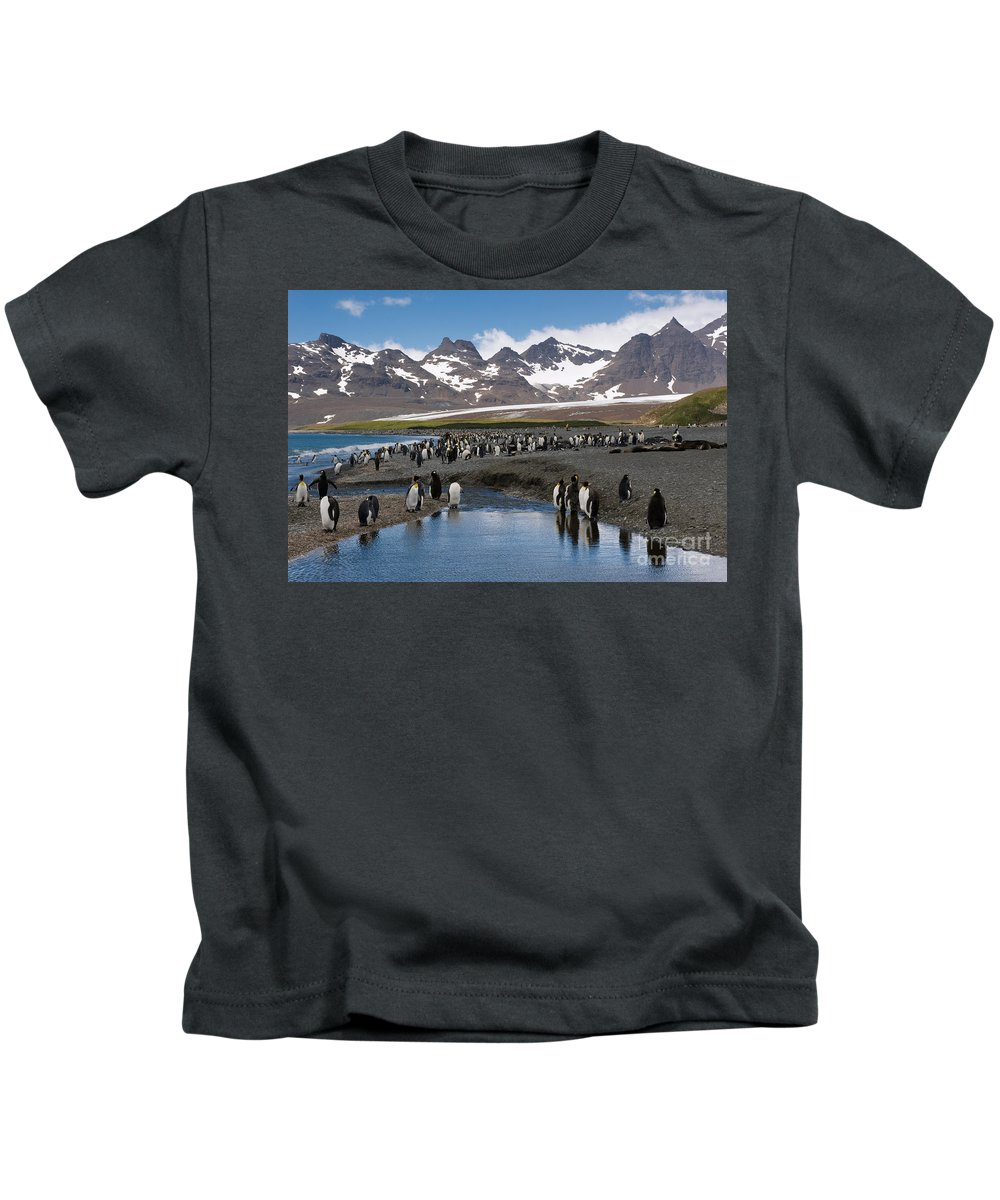 Animal Kids T-Shirt featuring the photograph King Penguins by John Shaw