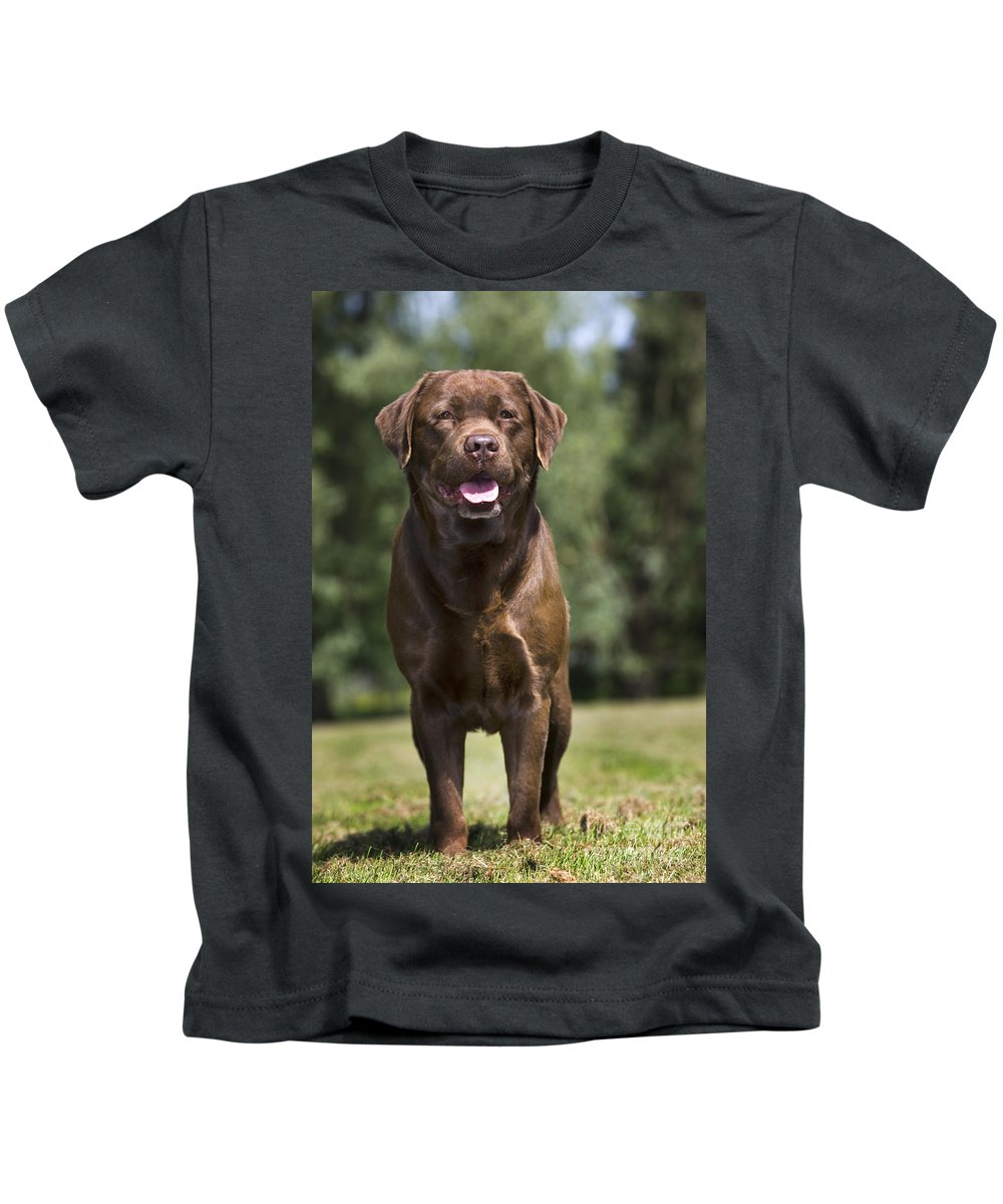 Mammal Kids T-Shirt featuring the photograph 110506p183 by Arterra Picture Library