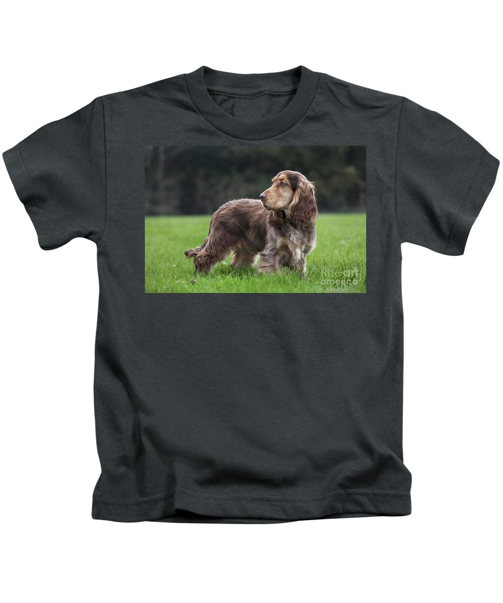 English Cocker Spaniel Kids T-Shirt featuring the photograph 111230p047 by Arterra Picture Library