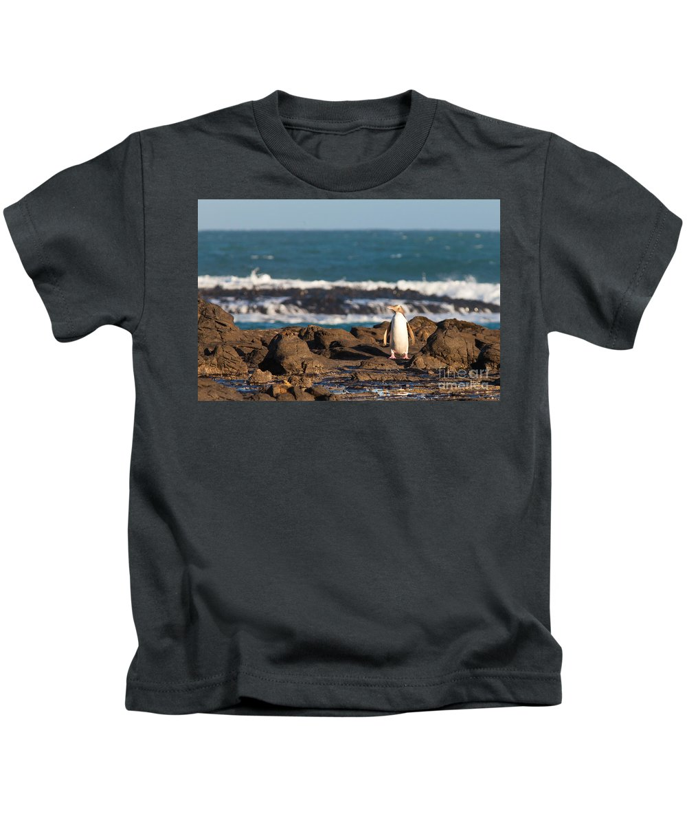 South Island Kids T-Shirt featuring the photograph Adult Nz Yellow-eyed Penguin Or Hoiho On Shore by Stephan Pietzko
