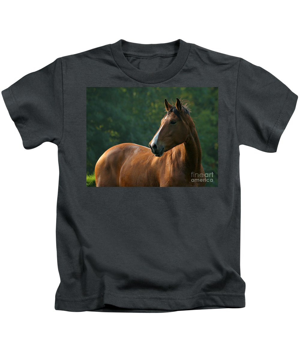 Horse Kids T-Shirt featuring the photograph The Observer by Angel Ciesniarska