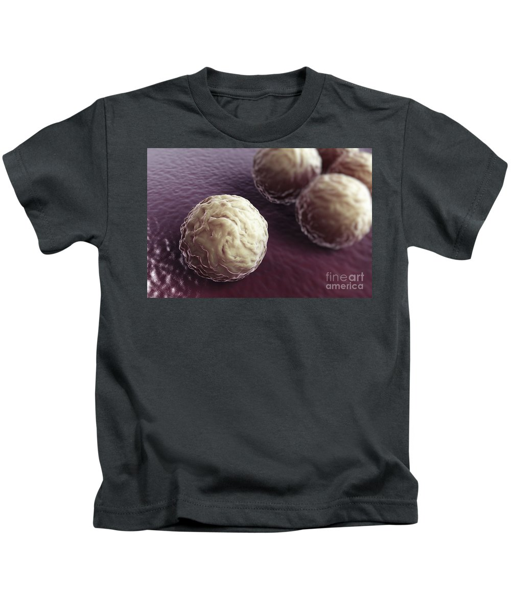Cells Kids T-Shirt featuring the photograph Chlamydia Bacteria by Science Picture Co