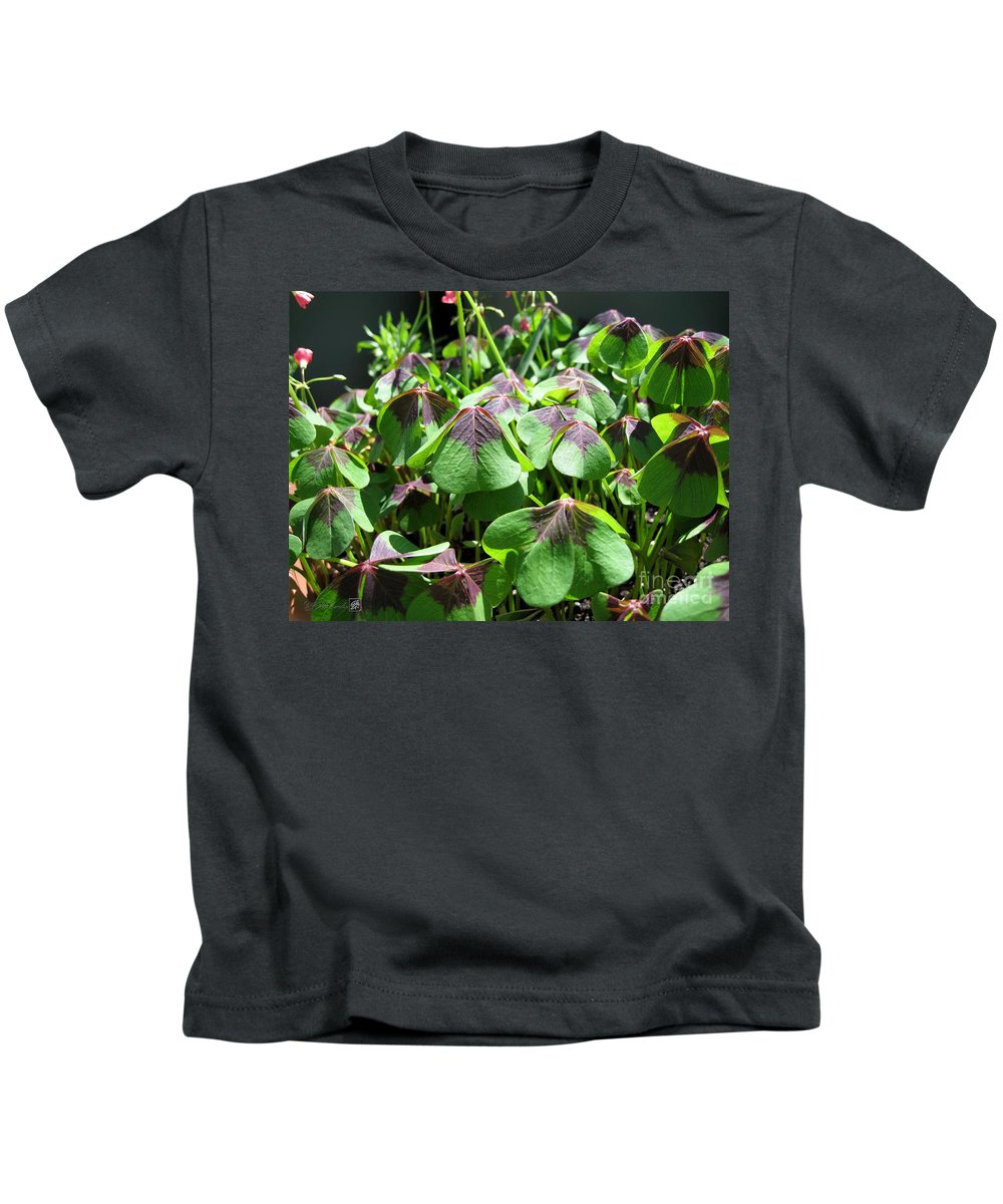 Mccombie Kids T-Shirt featuring the photograph Oxalis Deppei Named Iron Cross by J McCombie