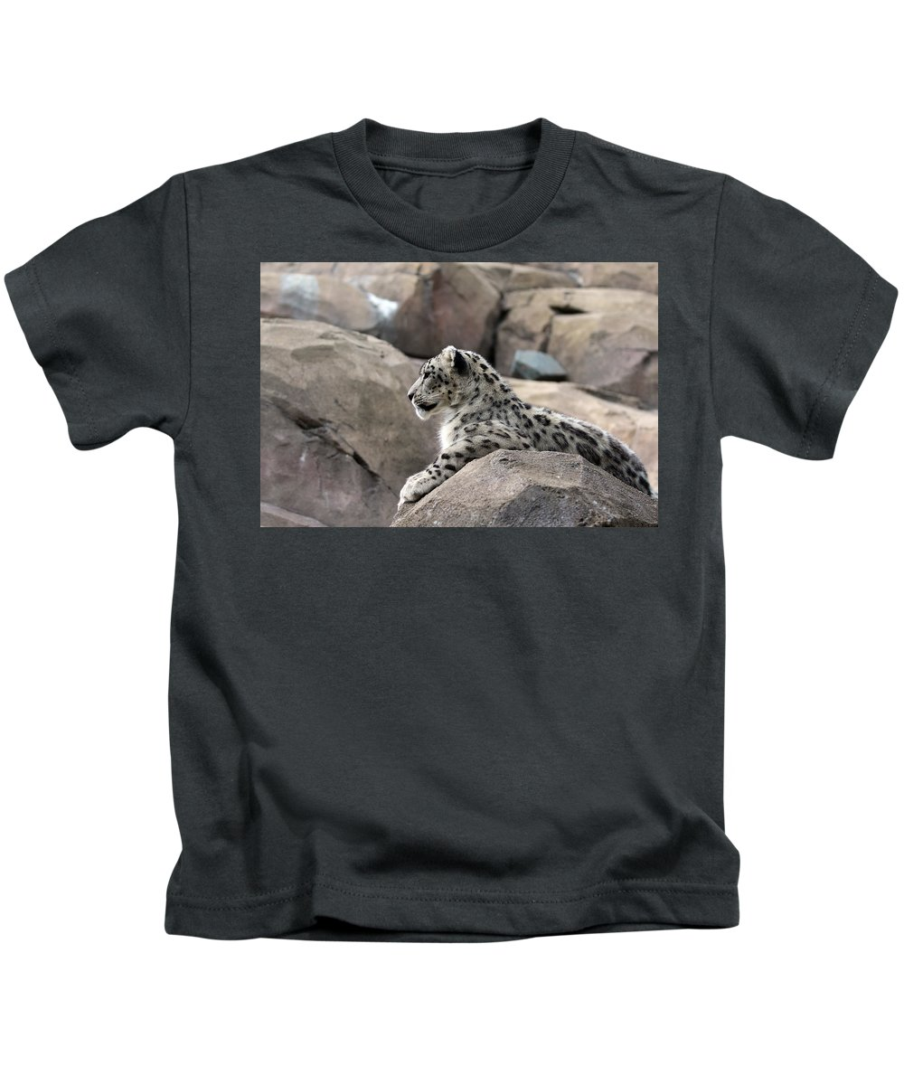 Animal Kids T-Shirt featuring the photograph Snow Leopard by Paul Fell