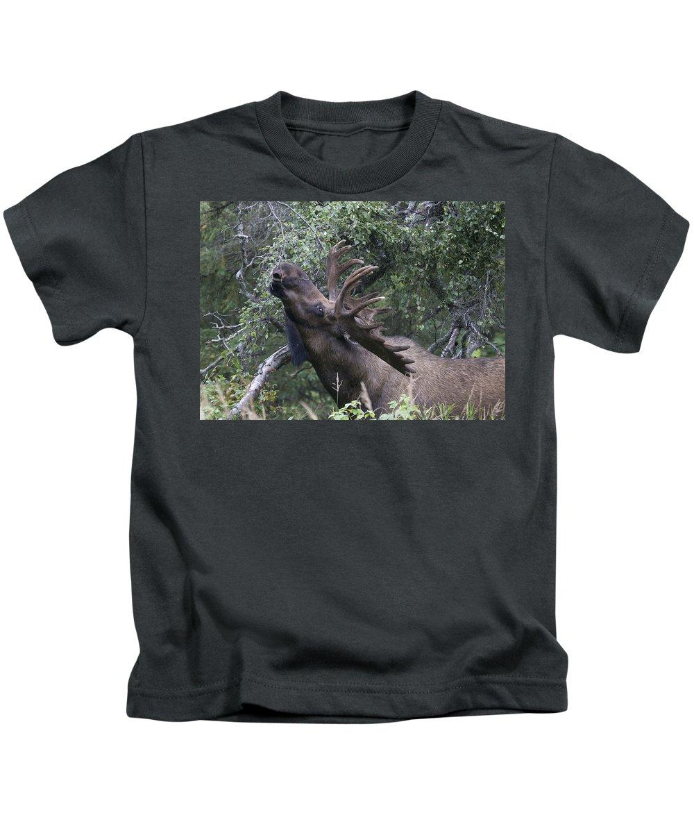 Doug Lloyd Kids T-Shirt featuring the photograph Stretch by Doug Lloyd