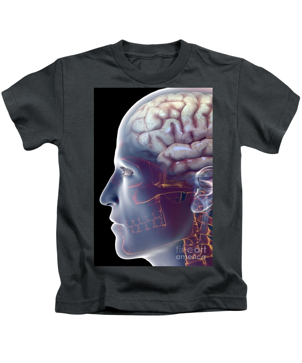 Central Sulcus Kids T-Shirt featuring the photograph Human Brain by Science Picture Co