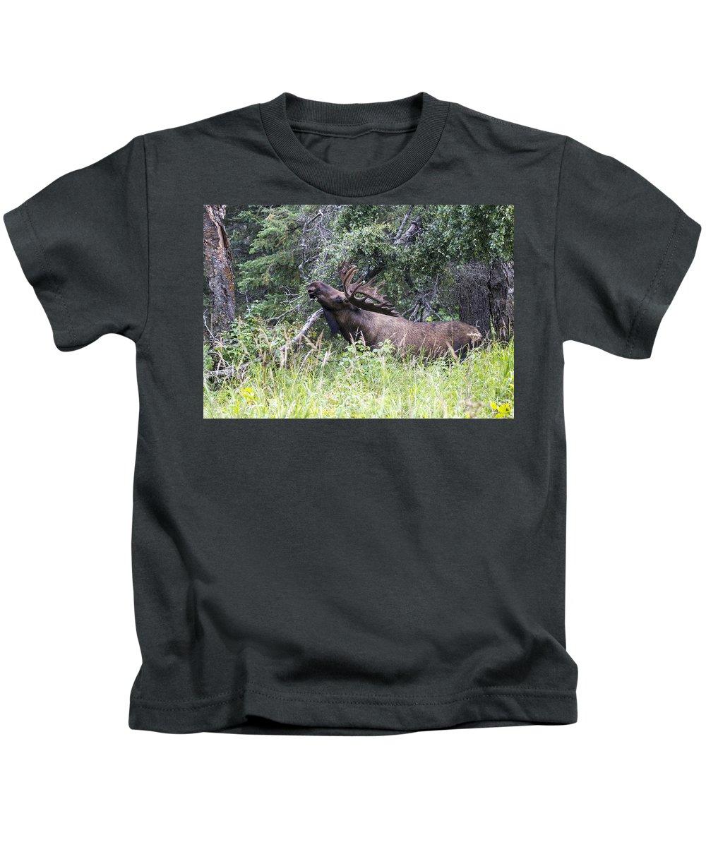 Doug Lloyd Kids T-Shirt featuring the photograph Big Fella by Doug Lloyd