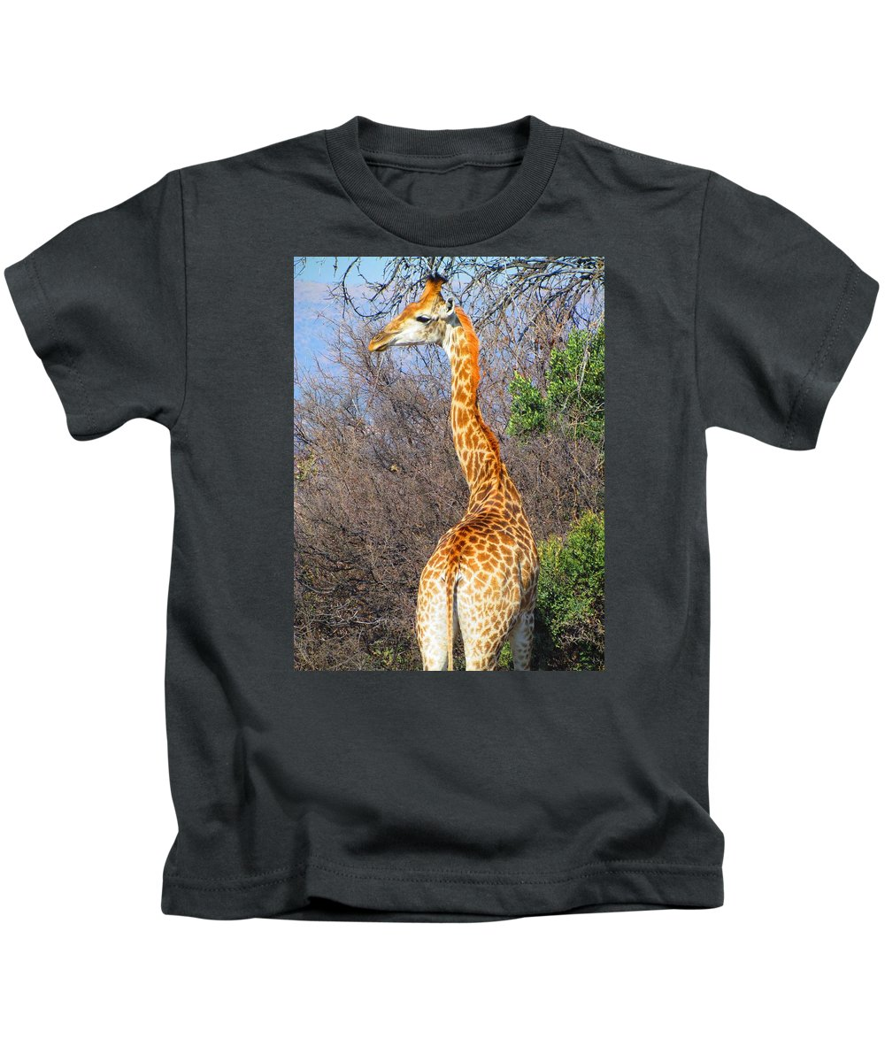 Mammal Kids T-Shirt featuring the photograph Giraffe by FL collection