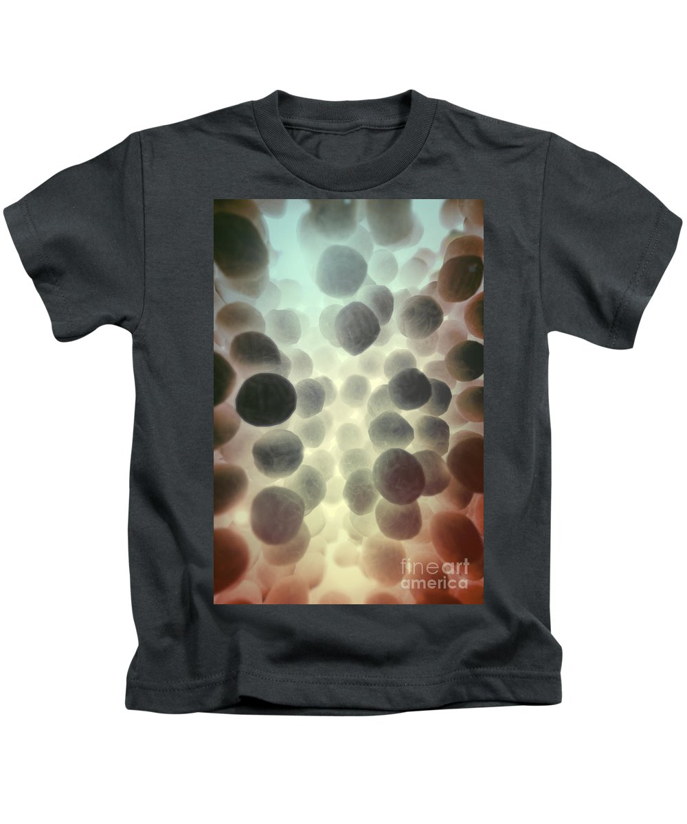 Coccus-shaped Kids T-Shirt featuring the photograph Mrsa by Science Picture Co