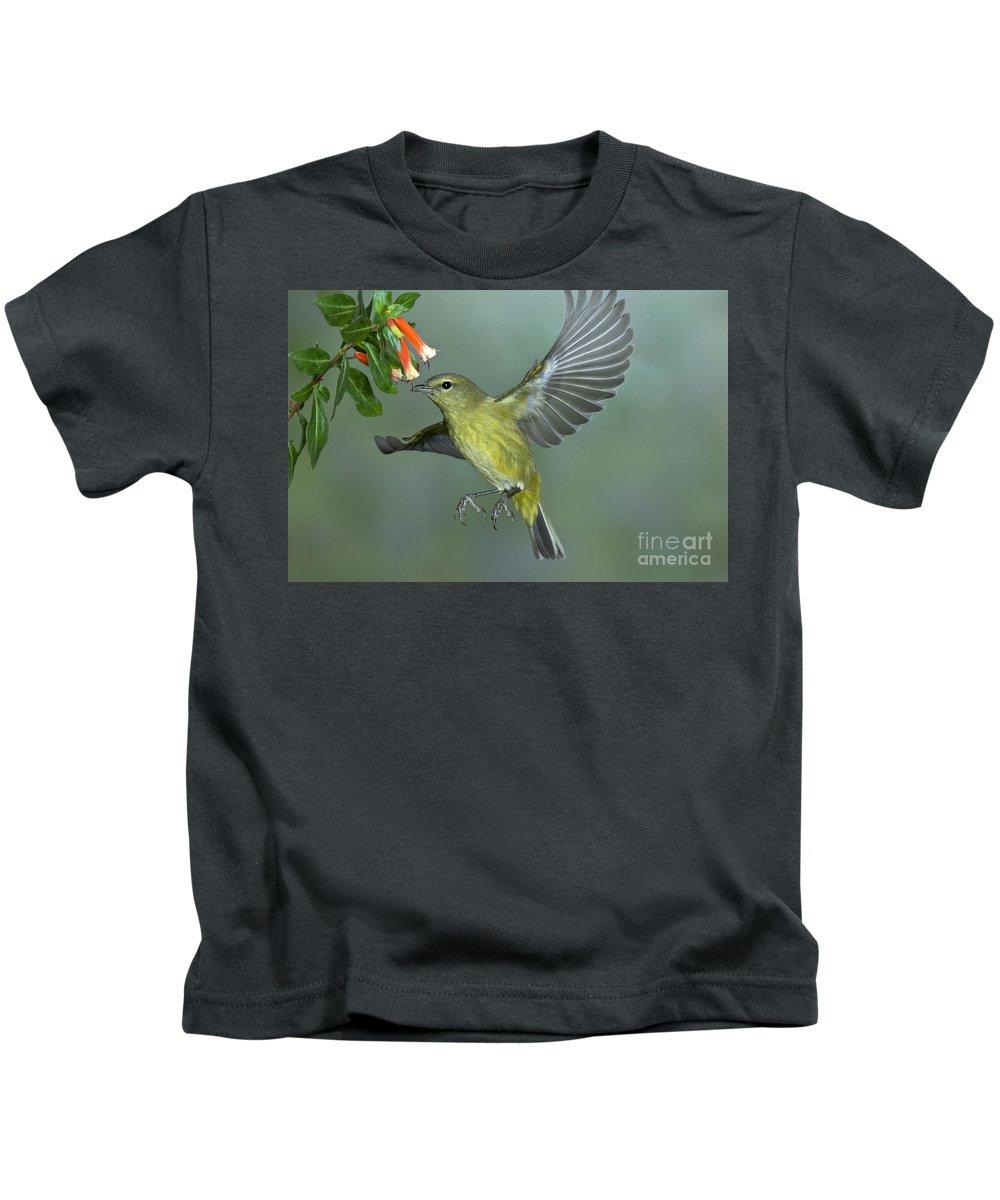 Orange-crowned Warbler Kids T-Shirt featuring the photograph Orange-crowned Warbler by Anthony Mercieca