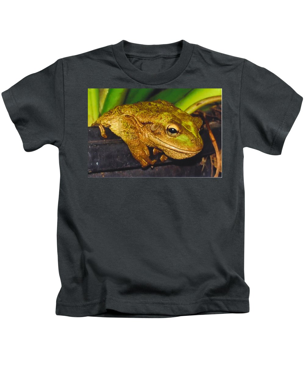 Hanging Out Kids T-Shirt featuring the photograph Treefrog by Robert Floyd