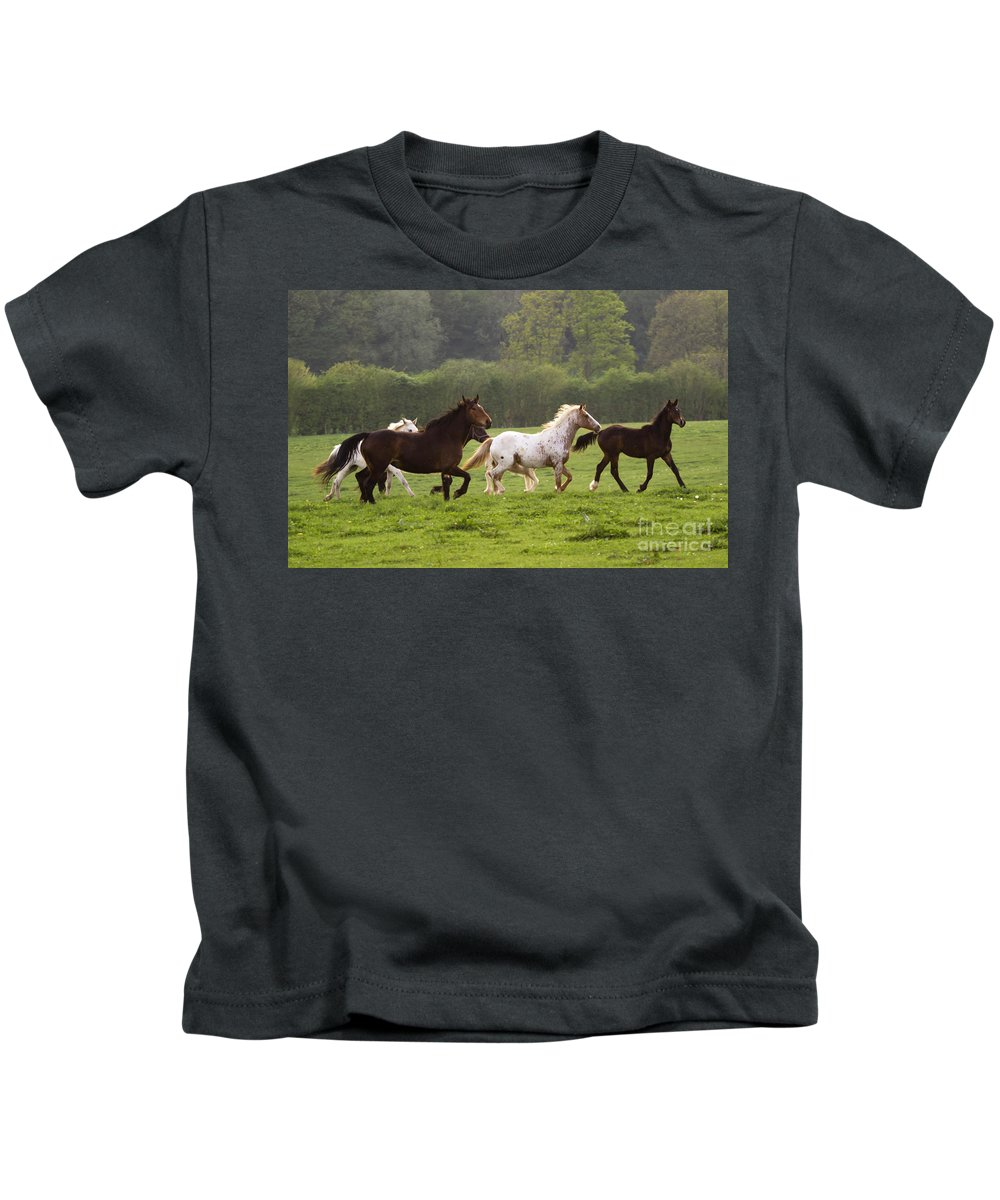 Horse Kids T-Shirt featuring the photograph Horses On The Meadow by Angel Ciesniarska