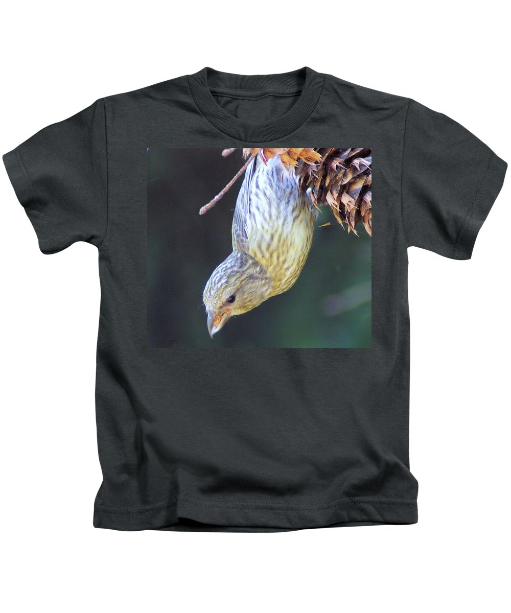 Fowl Kids T-Shirt featuring the photograph A Little Bird Eating Pine Cone Seeds by Jeff Swan