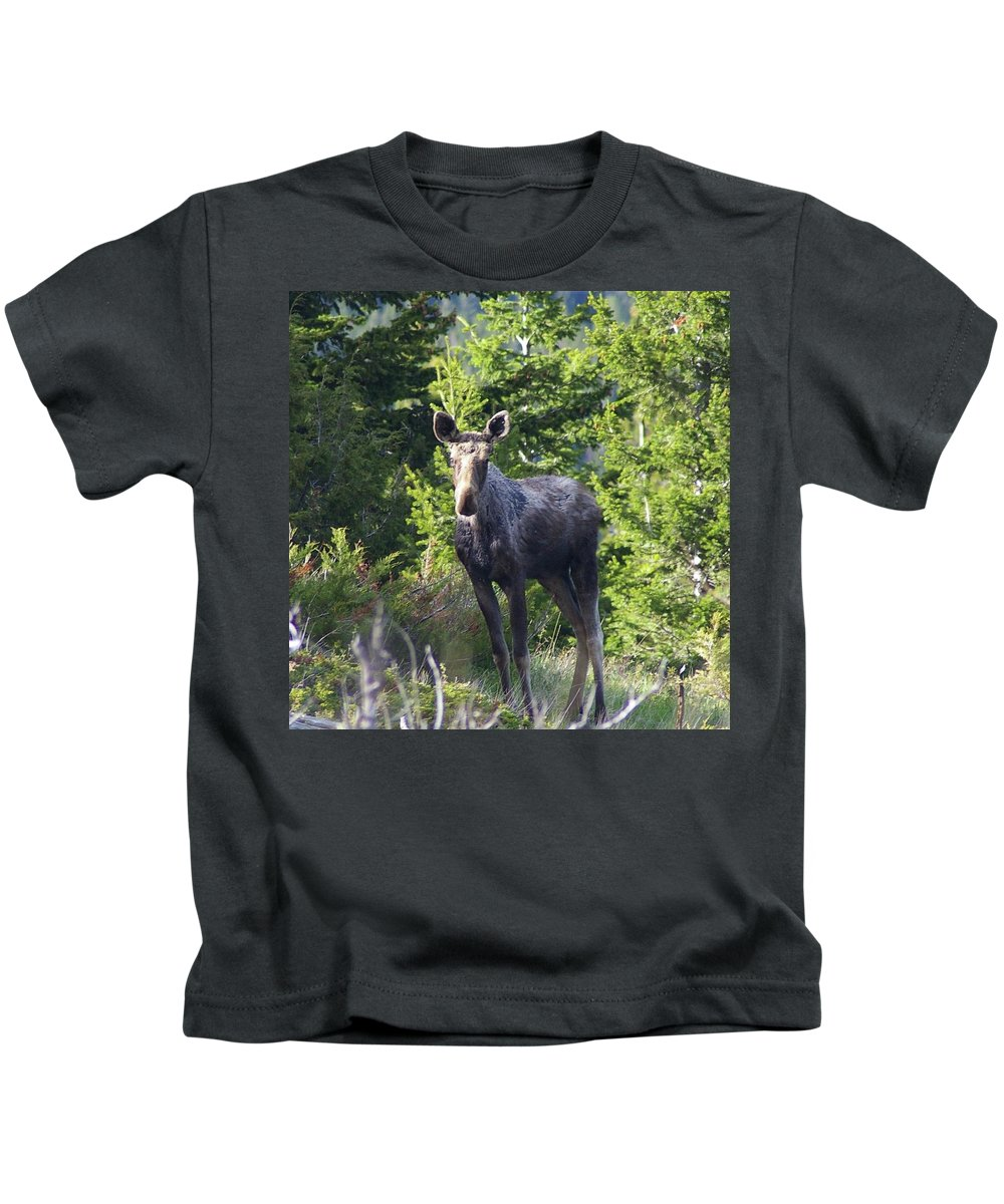 Moose Kids T-Shirt featuring the photograph A Young Moose by Jeff Swan