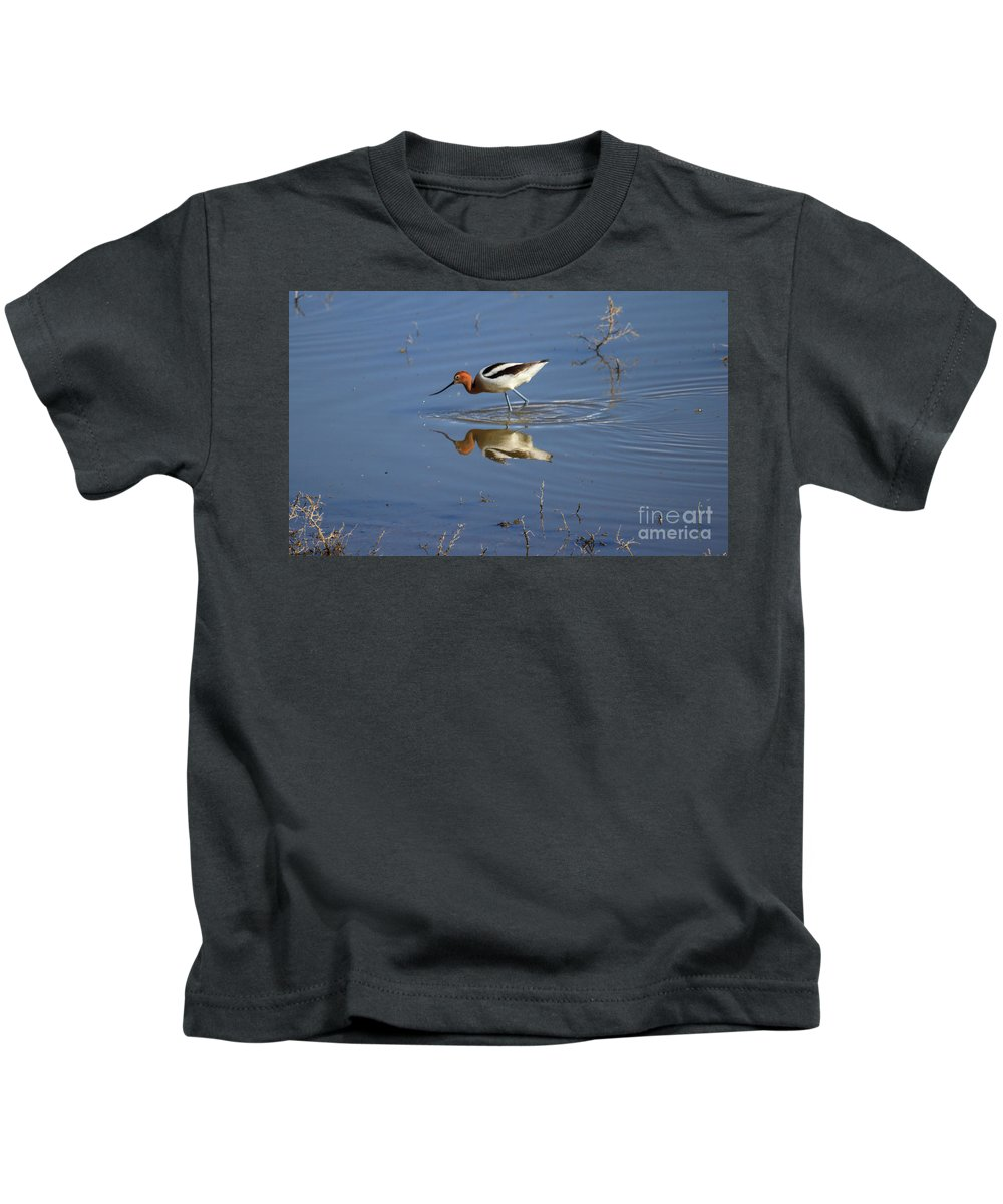 Wildlife Kids T-Shirt featuring the photograph American Avocet by Robert Bales