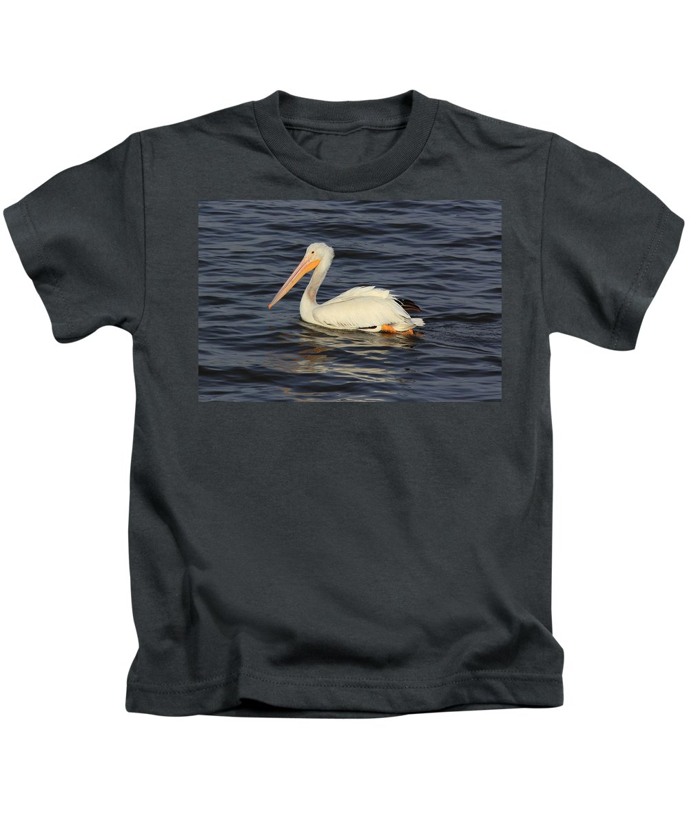 Bird Kids T-Shirt featuring the photograph American White Pelican Paddling by Scott Rackers