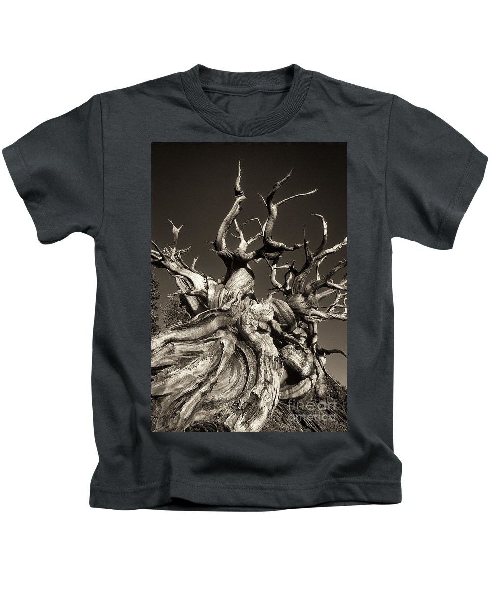 American Kids T-Shirt featuring the photograph Ancient Bristlecone Pine In Black And White by Dave Welling