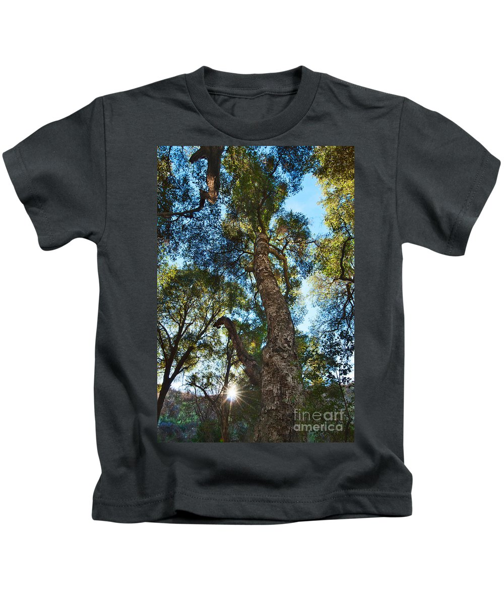 Tree Kids T-Shirt featuring the photograph Angeles Sun -beautiful Tree With Sunburst In Angeles National Forest In The San Gabriel Mountails by Jamie Pham